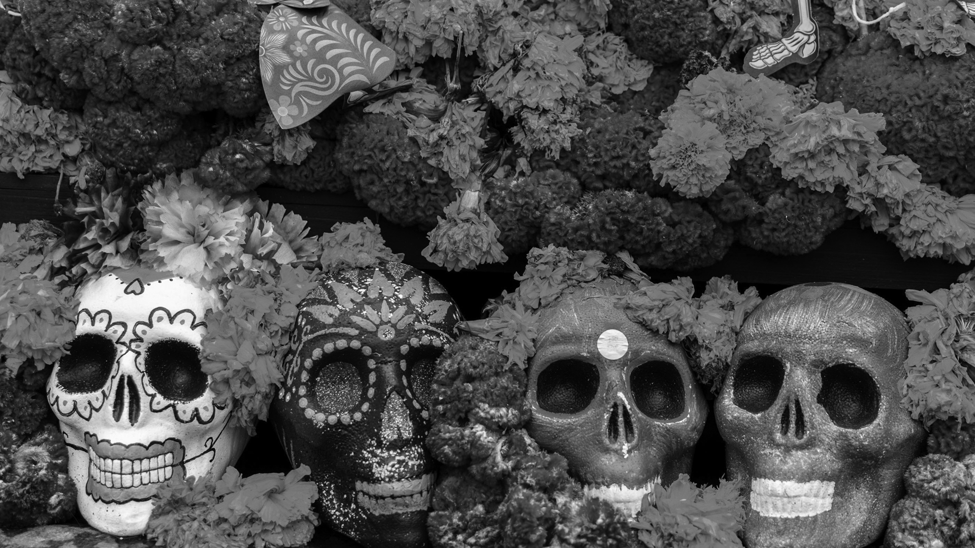 Read more about the article Day of the Dead